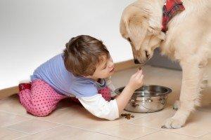 Una mascota le enseña el sentido de la responsabilidad