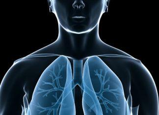 La respiración, signos vitales