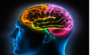 Quejarnos puede perjudicar nuestro cerebro