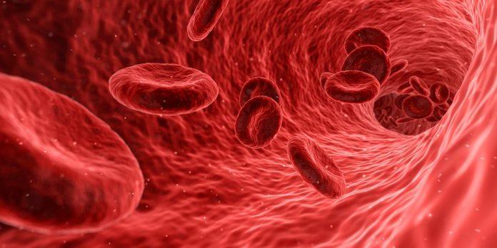 El plasma rico en plaquetas o PRP; es un tratamiento con fines estéticos y de salud. La difusión del mismo, viene dada principalmente por fines cosméticos, que establecen como objetivo del procedimiento, retardar el envejecimiento e incentivando la regeneración celular. Se realiza con la sangre del paciente; para esto, se requiere un equipo de especialistas y los instrumentos adecuado para realizarlo.