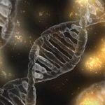 Mutaciones genéticas