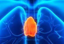 sistema-inmune-linfocitos