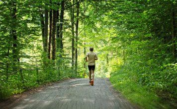 Hombres activos, caminatas de senderos