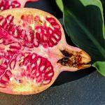 Deliciosa y fresca. Así es descrita la granada que contiene grandes beneficios para la salud. Sin duda, esas son una de las principales características que se pueden nombrar de la granada, una de las frutas favoritas para las personas.