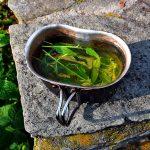 Zumo de sábila y kiwi – Recetas de bebidas