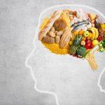 Un cerebro alimentado