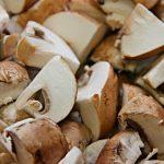 Beneficios del consumo de hongos