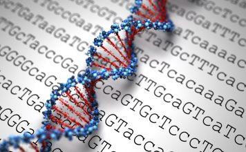La Secuencia genómica