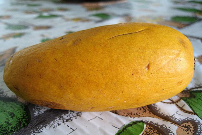 Buenas razones para consumir mango