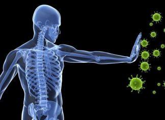 La inmunidad del organismo