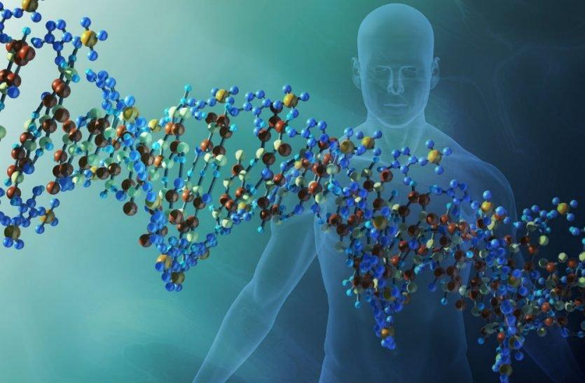 Es increíble como nuestro cuerpo responde a la genética