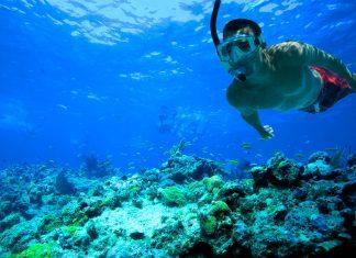 Snorkel, más que diversión