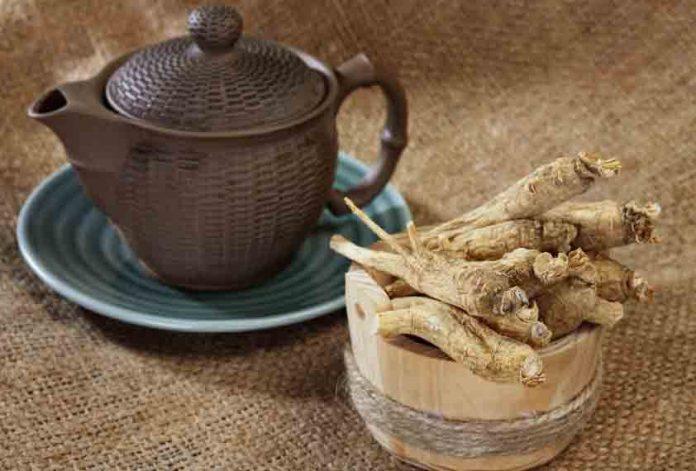 El Ginseng una raíz ancestral