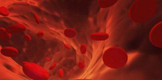 Oro rojo… La sangre sinónimo de vida