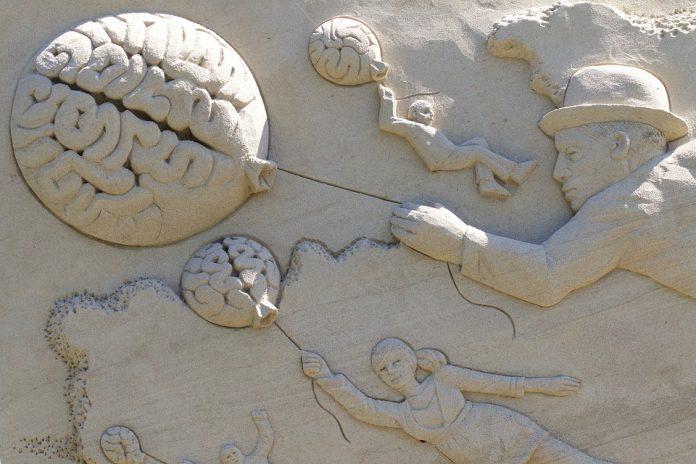 plasticidad cerebral en los niños
