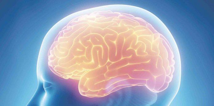 Las causas del líquido en el cerebro