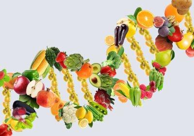 los alimentos que ingieres son los adecuados