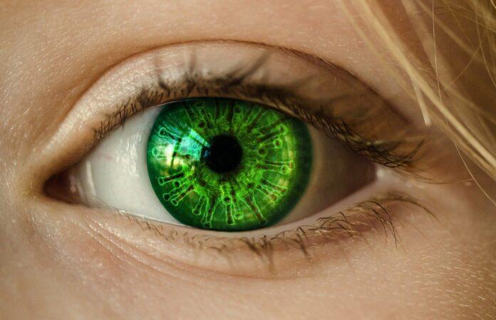 herpes zóster ocular